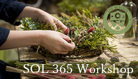 SOL365Workshop