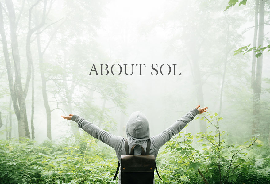 ABOUT SOL